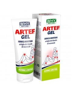 Artef Gel: Arnica, Artiglio...