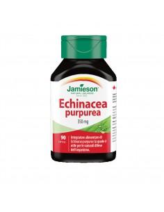 Echinacea Purpurea:...
