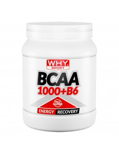 BCAA 1000 + B6 2:1:1 - 600...
