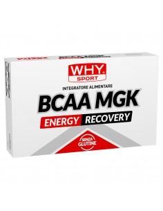 BCAA MGK: Aminoacidi...