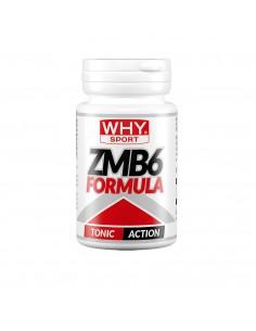 ZMB 6 FORMULA: vitamina B6,...